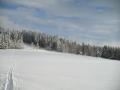 Lyžařská stopa pod Javorníkem, 18.ledna 2004