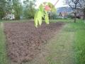 Čerstvě osázené bramborové pole pana Brůny, 8.května 2004