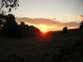 Pastvina nad silnicí ze Sklenařic do Olešnice, 7.srpna 2004