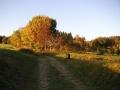 Cesta ke Kapličce, 10.října 2004
