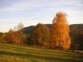 Pastvina nad silnicí ze Sklenařic do Olešnice, 24.října 2004