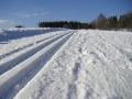 Lyžařská stopa ke Kapličce, 19.března 2005