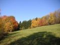 Pastvina nad silnicí ze Sklenařic do Olešnice, 29.října 2005
