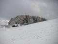 Chaloupka nad Valtěřicemi, 17.listopadu 2005