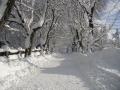 Cesta u hřbitova ve Vysokém nad Jizerou, 23.prosince 2005